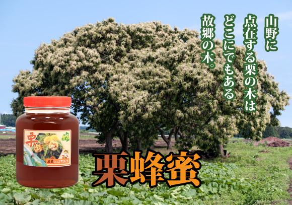 石蔵の栗蜂蜜