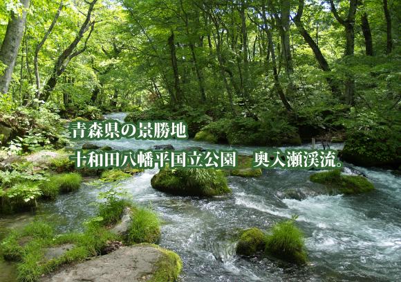 十和田八幡平国立公園奥入瀬渓流のとちはちみつ